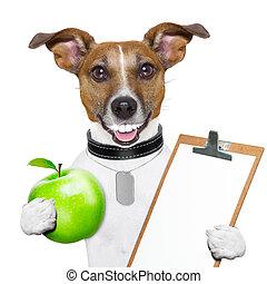 בריא, כלב, כושר גופני