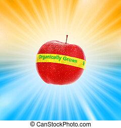 בשל, אדום, אורגני, תפוח עץ, מעל, מבריק, התפוצץ, רקע., לא עמוק, dof, התמקד, ב, אורגני, label.