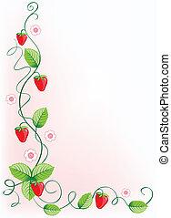 בשל, תותי שדה, ו, ירוק עוזב, עם, פרחים