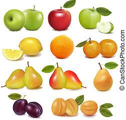 גדול, קבץ, של, שונה, פרי טרי