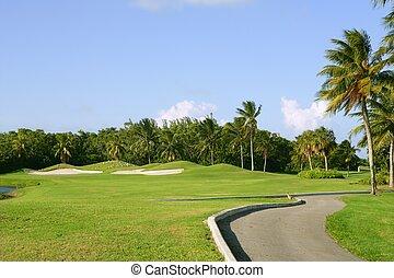 גולף, מיאמי, טרופי, תחום, הקלד את ביסכאין