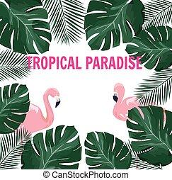 גן עדן טרופי