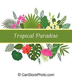 גן עדן טרופי, כרטיס, עם, סגנן, עוזב, ו, flowers.