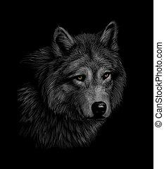 דמות, הובל, זאב, רקע, שחור