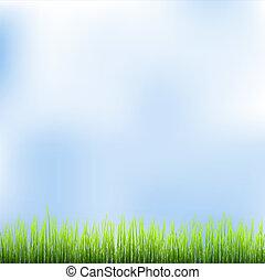 דשא ירוק, וכחול, שמיים