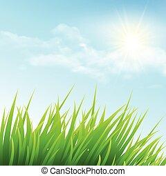 דשא ירוק, וכחול, sky., וקטור, דוגמה