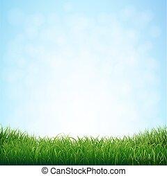 דשא, עם, שמיים כחולים