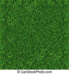 דשא, רקע