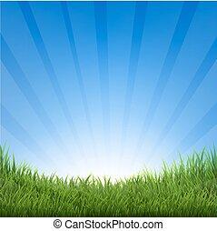 דשא, שמיים