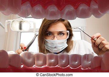 הבט, ב, צעיר, נקבה, רופא שניים, עם, כלים של השיניים, מ,...