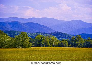 הרים כחולים, רכס