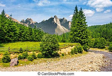 הרים, נחל, עצים