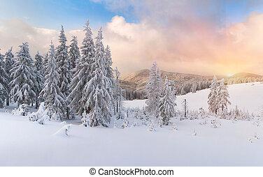 הרים, carpathian, חורף, עלית שמש