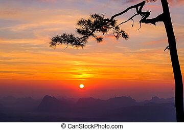 הר, nok, pha, kradueng, בוקר, טווח, loei, סאנריסינג, תאילנד,...