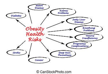 השמנה, בריאות, סיכונים
