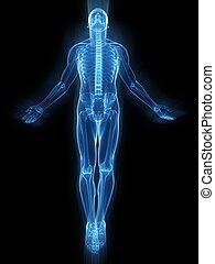 התקוממות, גוף אנושי