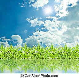 ה, דשא, עם, a, שמיים כחולים