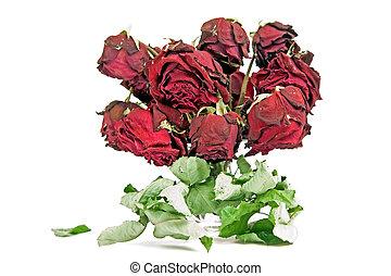 ורדים, יבש, אדום