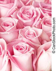 ורדים, רקע
