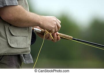 זבוב דג