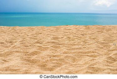 חוף של חול