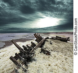 חוף של שלד