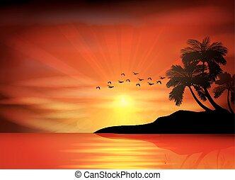 חוף של שקיעה
