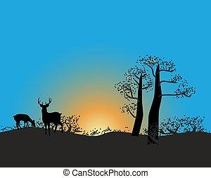 חיות פרא, טבע, רקע., וקטור, שקיעה, אפריקני