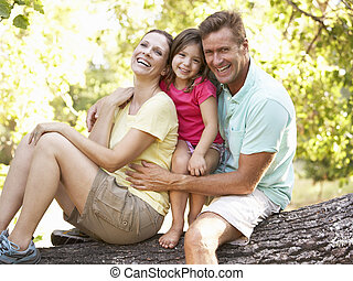 חנה, עץ, משפחה, לשבת