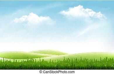 טבע, קיץ, רקע, עם, דשא ירוק, וכחול, sky., וקטור