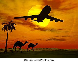 טרופי, שקיעה, עם, מטוס.