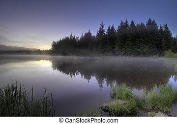 טריליום, ערפל, אגם, בוקר