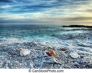 ים אדריאטי