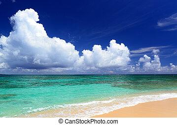 ים, של, אזמרגד ירוק, של, ה, אוקינווה