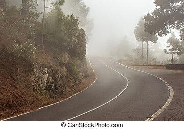 יער מעורפל, רחוב, יער, מעורפל, דרך