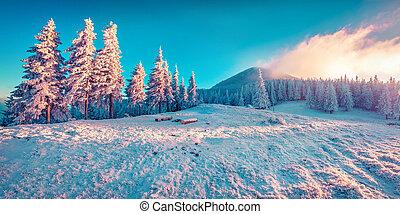 יפה, הרים., חורף, עלית שמש