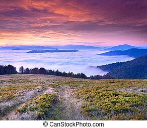 יפה, קיץ, נוף, ב, ה, הרים., עלית שמש, עם, עננים, מתחת, ה,...