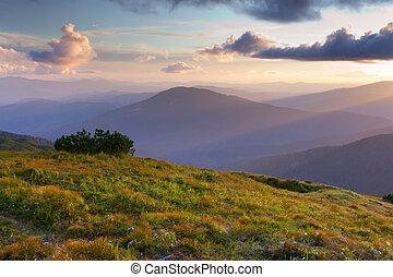 יפה, קיץ, שקיעה, הרים., נוף
