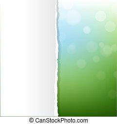 ירוק, טבע, רקע, עם, bokeh