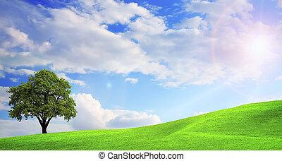 ירוק, נוף של טבע