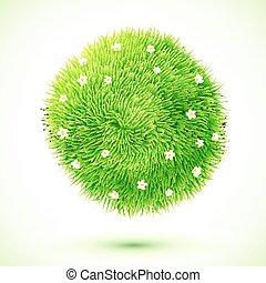 ירוק, נוצי, דשא, כדור, עם, chamomiles