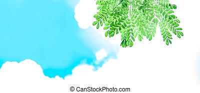 ירוק עוזב, עם, אור שמש, ו, יפה, שמיים כחולים, ו, עננים לבנים, רקע, עם, העתק רווח, ל, text.
