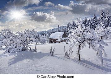 כבד, הר, strymba, carpathian, חורף, בתים, נפילת שלג, פאיריטאל, יוקריין, כפר, עצים, village., כסה, europe.