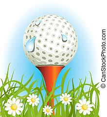 כדור של גולף, על הדשא