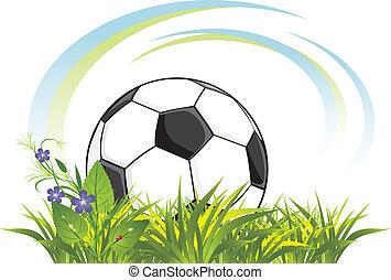 כדור של כדורגל, ב, ה, דשא