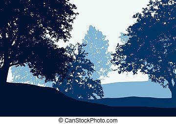 כחול, גבעות, ברור, מתחת, שמיים, נשיר, יער, בין