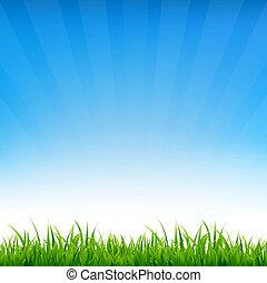 כחול, דשא, שמיים