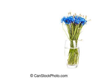 כחול, ריח, פרחים לבנים, הפרד