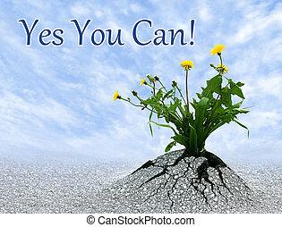 כן, אתה, יכול