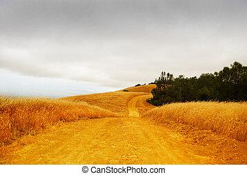 כפרי, שמיים, דרך, סוער